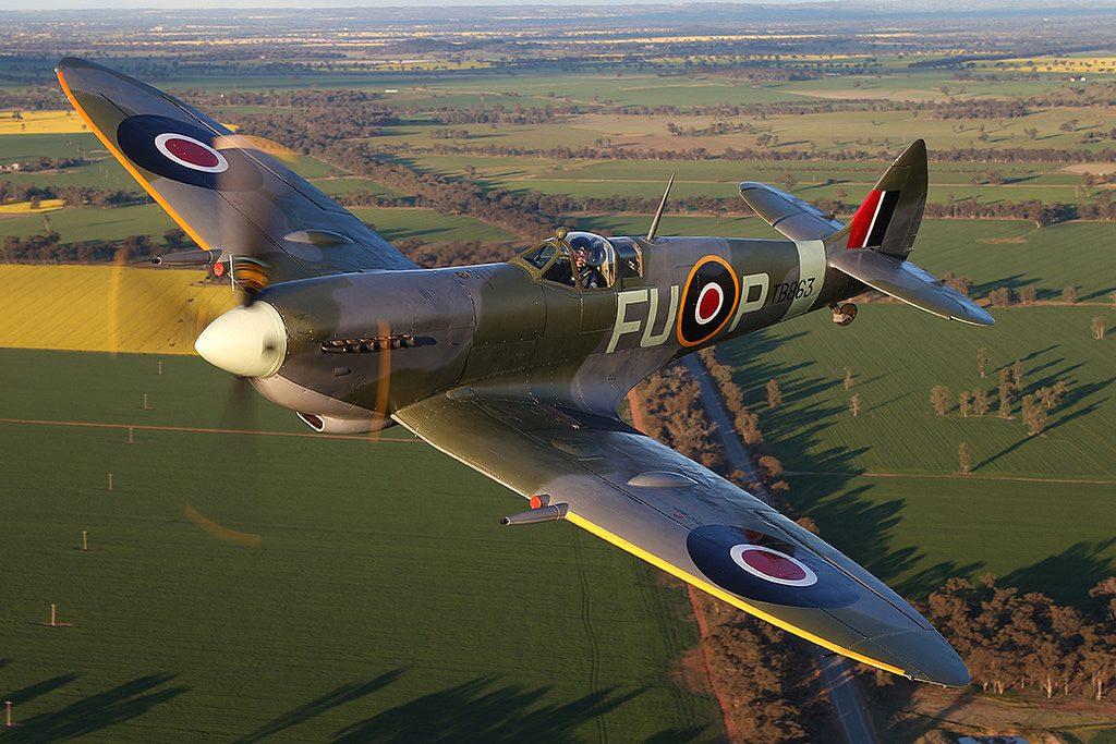 Temora Spitfire