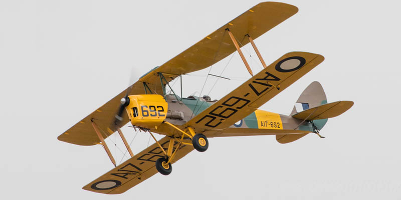 http://www.airshowtravel.co.nz/wp-content/uploads/avalon_tiger_800_400.jpg