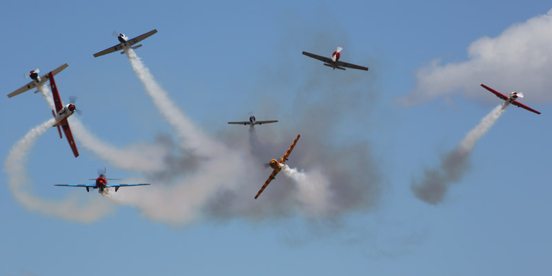 https://www.airshowtravel.co.nz/wp-content/uploads/harvards_break_800_400.jpg
